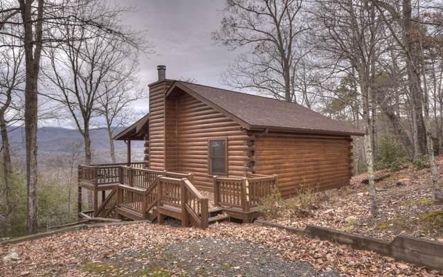 536 Cohutta Mountain Rd, Cherry Log, GA 30522 (MLS #293921) :: RE/MAX Town & Country