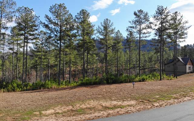 LT322 The Cove At 1300, Blairsville, GA 30512 (MLS #293969) :: RE/MAX Town & Country