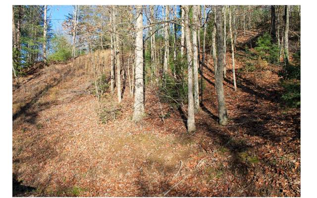 LOT 21B/21C HOLLY BERRY, Murphy, NC 28906 (MLS #294074) :: RE/MAX Town & Country