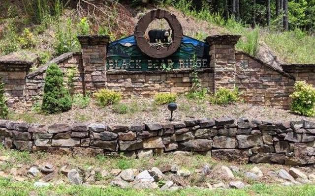 7 Black Bear Ridge, Ellijay, GA 30536 (MLS #294165) :: RE/MAX Town & Country