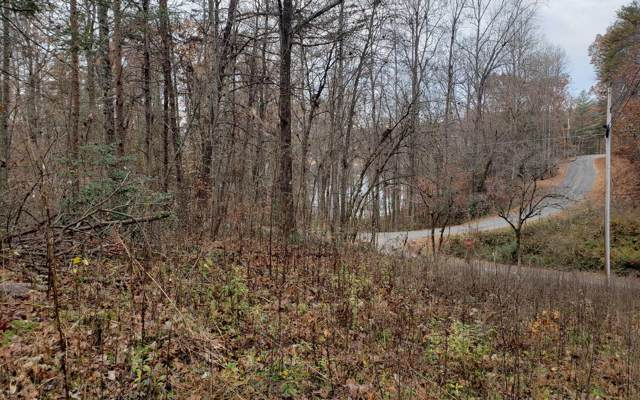 Woodland Lane, Hayesville, NC 28904 (MLS #294225) :: RE/MAX Town & Country