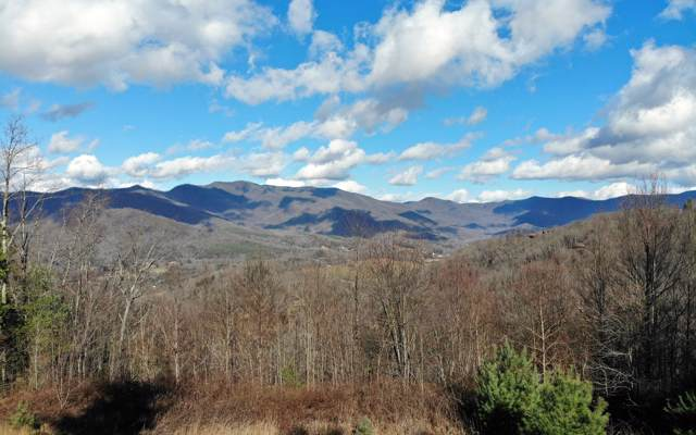 LOT29 Shiloh Overlook, Hayesville, NC 28904 (MLS #294331) :: Path & Post Real Estate