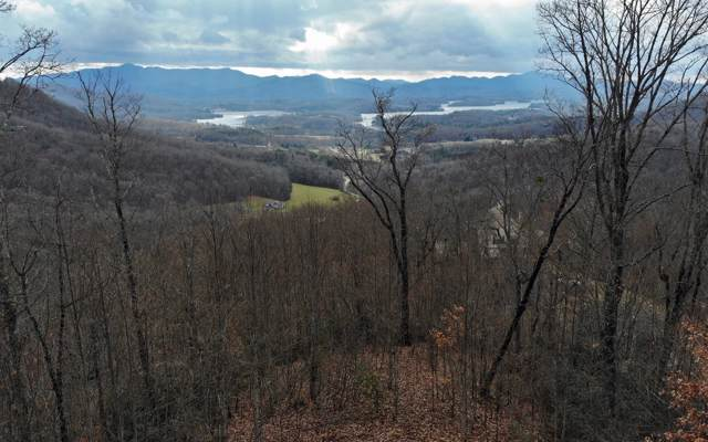 LOT51 Lynn Haven Way, Hayesville, NC 28904 (MLS #294378) :: RE/MAX Town & Country