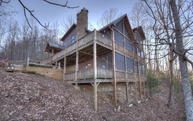 60 Unaka Trail, Mineral Bluff, GA 30559 (MLS #294418) :: RE/MAX Town & Country