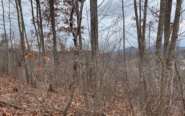 LT 17 Ramey Mountain, Hiawassee, GA 30546 (MLS #294608) :: RE/MAX Town & Country