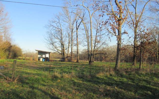 000 W 000 W COUNTY LINE RD, LULA, GA 30554 (MLS #294624) :: RE/MAX Town & Country