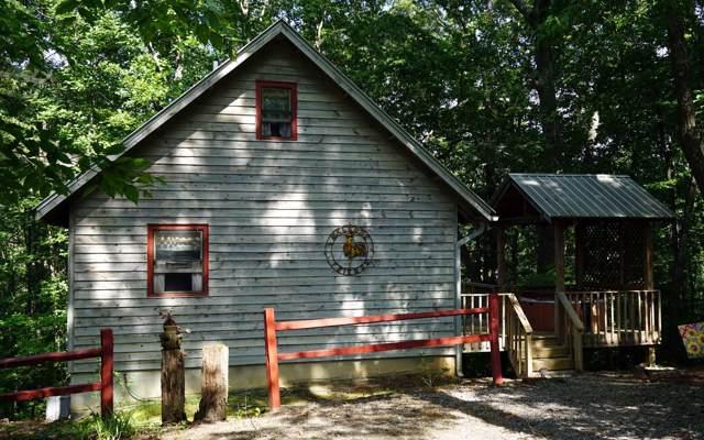 43 S Lois Lane, Blairsville, GA 30512 (MLS #294627) :: RE/MAX Town & Country