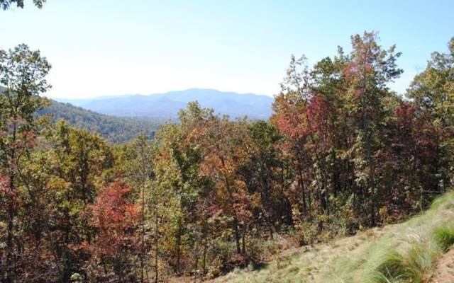 Pheasant Trail, Warne, NC 28909 (MLS #294730) :: Path & Post Real Estate