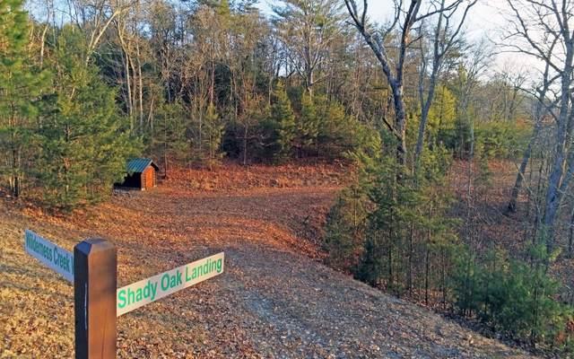 Shady Oak Landing, Murphy, NC 28906 (MLS #294803) :: Path & Post Real Estate