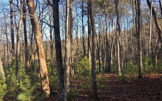 LOT 5 Hemlock Ridge, Blairsville, GA 30512 (MLS #294827) :: RE/MAX Town & Country