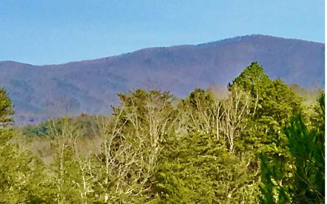 LT166 Shenendoa, Ellijay, GA 30540 (MLS #294945) :: RE/MAX Town & Country
