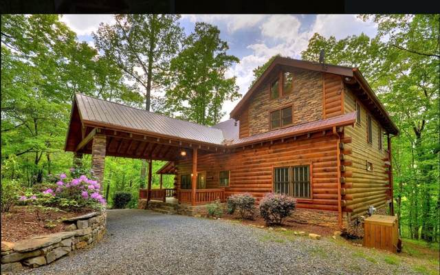 594 Mountain Rivers Lane, Mineral Bluff, GA 30559 (MLS #295066) :: RE/MAX Town & Country