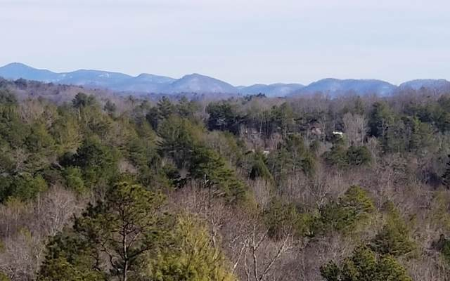 236 Forest Lane, Murphy, NC 28906 (MLS #295088) :: RE/MAX Town & Country