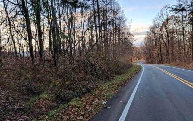 LT 47 Burnt Mountain Road, Ellijay, GA 30536 (MLS #295147) :: RE/MAX Town & Country