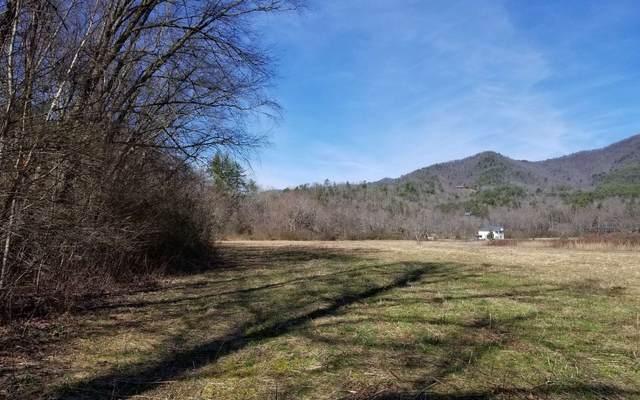 Pauls Meadow, Hayesville, NC 28904 (MLS #295206) :: Path & Post Real Estate
