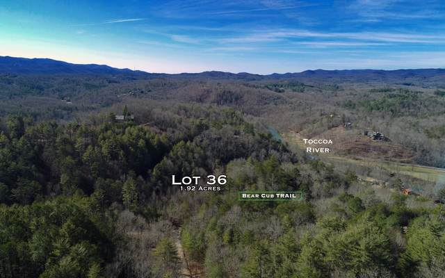 Lot 36 Bear Cub Trl, Mineral Bluff, GA 30559 (MLS #295228) :: RE/MAX Town & Country