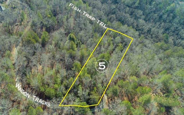 Lot 5 Wagon Tracks, Mineral Bluff, GA 30559 (MLS #295229) :: RE/MAX Town & Country