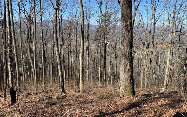 LOT 2 Rocky Knob, Young Harris, GA 30582 (MLS #295243) :: RE/MAX Town & Country