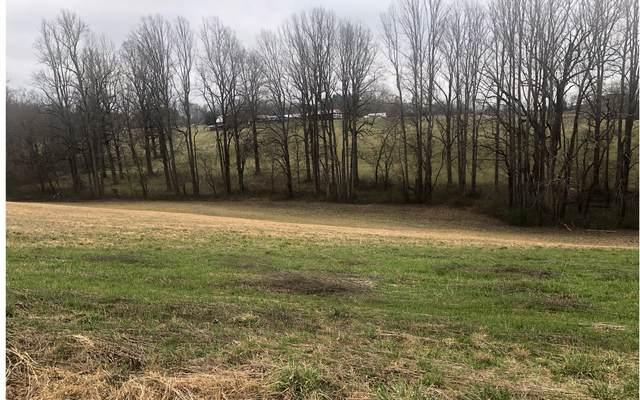 111 Owen Glen, Blairsville, GA 30512 (MLS #295280) :: RE/MAX Town & Country