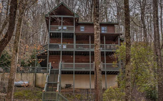 51 Charity Ct, Ellijay, GA 30540 (MLS #295307) :: RE/MAX Town & Country