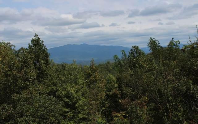 20 Longview Ridge, Hayesville, NC 28904 (MLS #295311) :: RE/MAX Town & Country