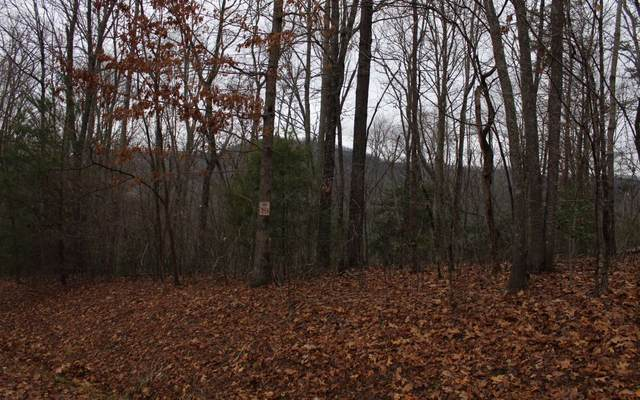 13 Moonshine Ridge, Hayesville, NC 28904 (MLS #295335) :: RE/MAX Town & Country