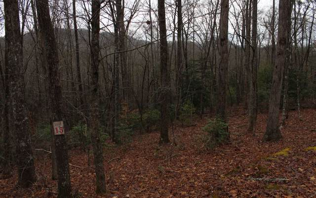 15 Moonshine Ridge, Hayesville, NC 28904 (MLS #295340) :: RE/MAX Town & Country