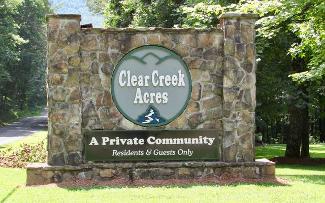 Farmview Road, Talking Rock, GA 30175 (MLS #295359) :: RE/MAX Town & Country