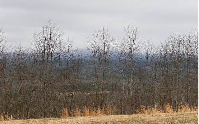 35 Great Sky Trail, Murphy, NC 28906 (MLS #295361) :: RE/MAX Town & Country
