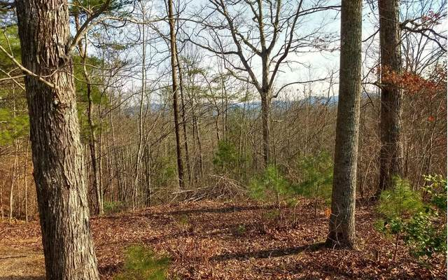 TR-B Fairview Ave, Blairsville, GA 30512 (MLS #295366) :: RE/MAX Town & Country