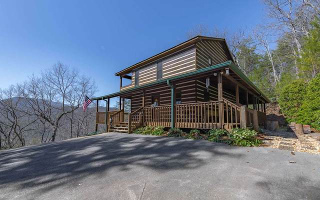 384 Stover Knob Trail, Blue Ridge, GA 30513 (MLS #295369) :: RE/MAX Town & Country