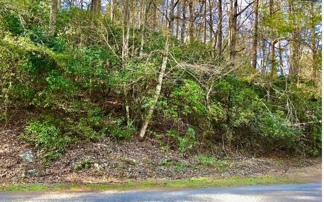 LOT1 Squirrel Hunting Rd, Ellijay, GA 30536 (MLS #295420) :: RE/MAX Town & Country