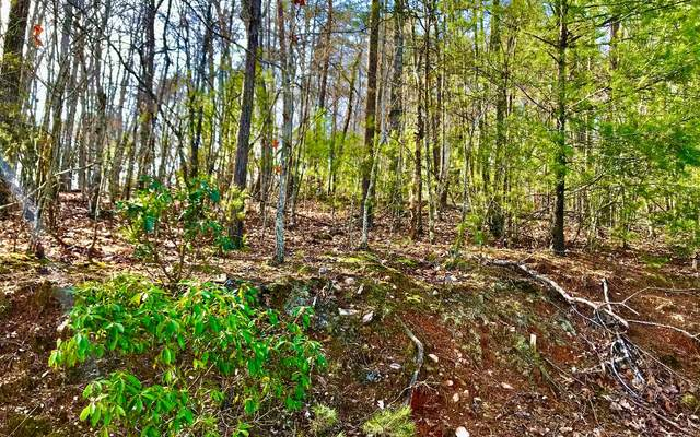 LOT5 Squirrel Hunting Rd, Ellijay, GA 30536 (MLS #295423) :: RE/MAX Town & Country