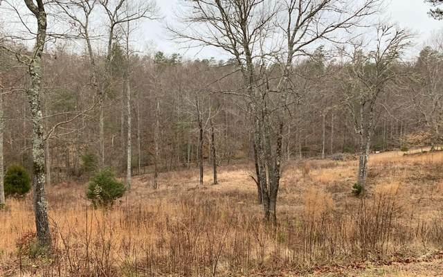 LT61 Double Springs, Blairsville, GA 30546 (MLS #295465) :: Path & Post Real Estate
