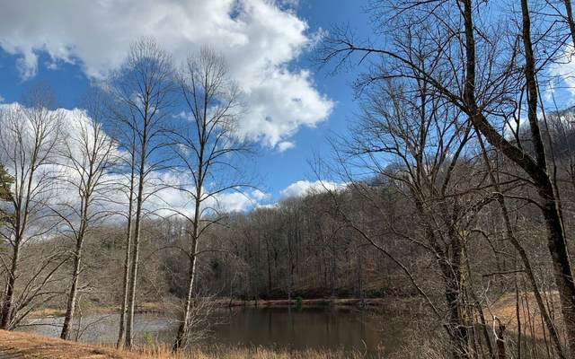 LT 84 Cutters Way-Shiloh, Hayesville, NC 28904 (MLS #295467) :: Path & Post Real Estate