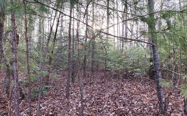 LT 25 Nottely Falls Estate, Blairsville, GA 30512 (MLS #295468) :: RE/MAX Town & Country