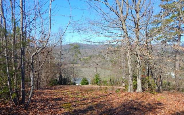 27 Hillside Drive, Warne, NC 28909 (MLS #295477) :: RE/MAX Town & Country