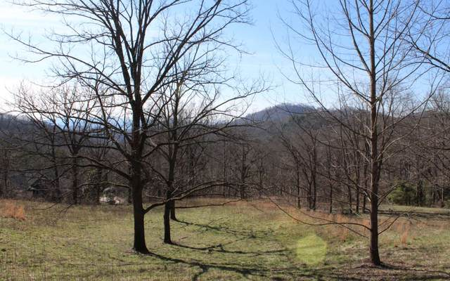 LOT 8 High Meadows, Hayesville, NC 28904 (MLS #295506) :: RE/MAX Town & Country