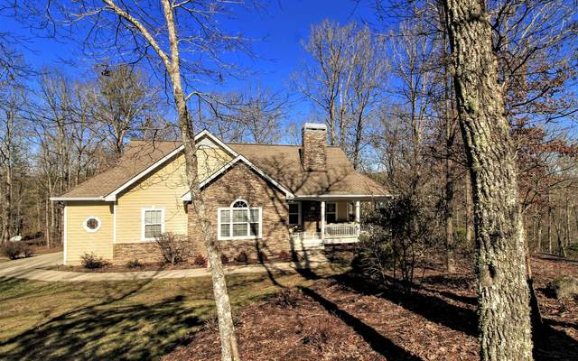 110 Cricket Lane, Warne, NC 28906 (MLS #295521) :: RE/MAX Town & Country