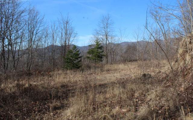 LT 74 Shiloh Development, Hayesville, NC 28904 (MLS #295581) :: Path & Post Real Estate