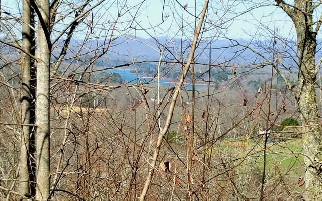 84 Little Deer Run, Hayesville, NC 28904 (MLS #295733) :: Path & Post Real Estate