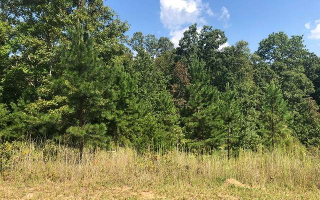 37 A Sharptop Settlement, Blairsville, GA 30512 (MLS #295747) :: RE/MAX Town & Country