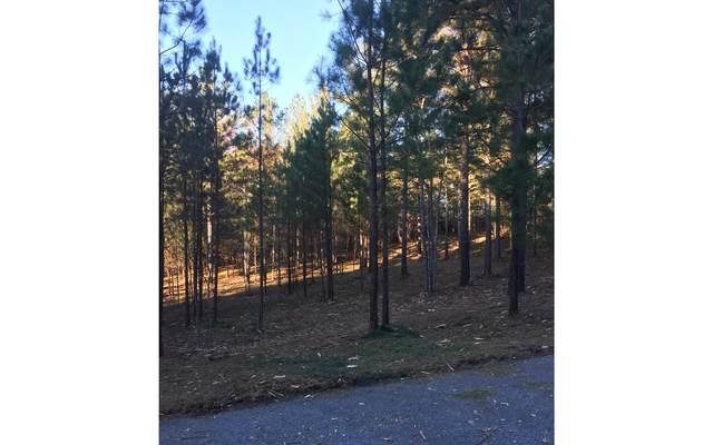 47 Loftis Mountain, Blairsville, GA 30512 (MLS #295801) :: RE/MAX Town & Country