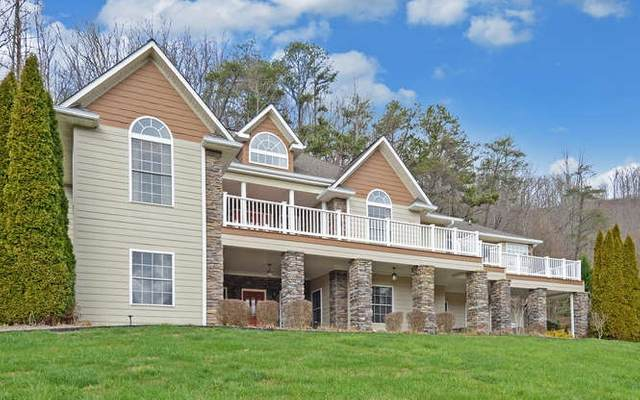 317 Ash Branch Circle, Hayesville, NC 28904 (MLS #295853) :: RE/MAX Town & Country