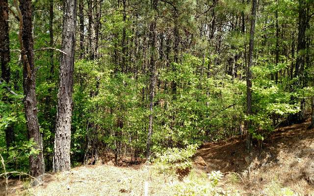 24,26 Highland Woods, Copperhill, TN 37317 (MLS #295915) :: RE/MAX Town & Country