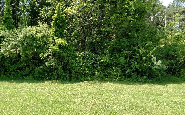 L-32, 33,35 HIGHLAND WOODS, Copperhill, TN 37317 (MLS #295918) :: RE/MAX Town & Country