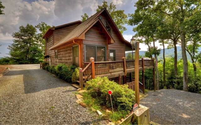 357 Skyline Dr, Cherry Log, GA 30522 (MLS #296012) :: RE/MAX Town & Country