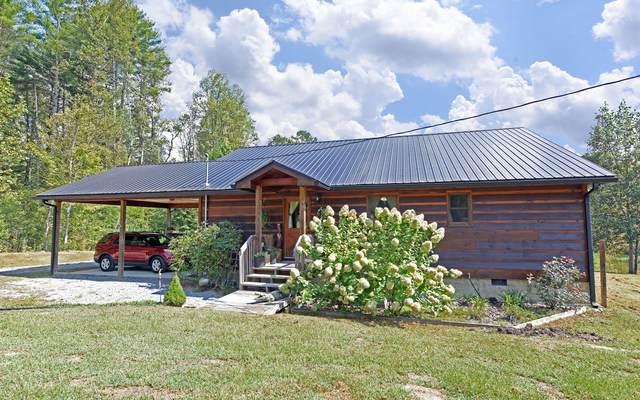 549 Jolley, Epworth, GA 30541 (MLS #296063) :: RE/MAX Town & Country