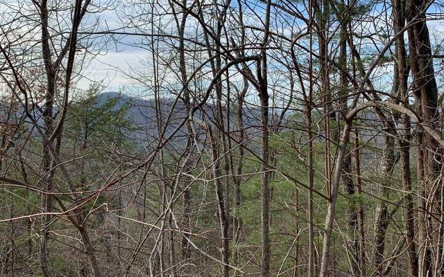 LOT29 Mission Ridge Over., Hayesville, NC 28904 (MLS #296091) :: Path & Post Real Estate