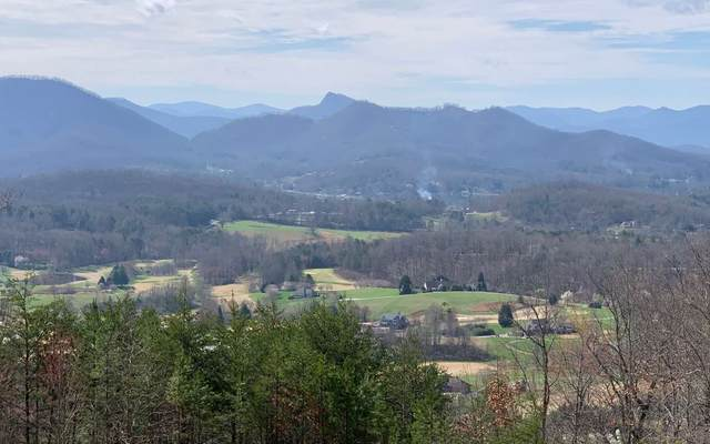 LT14 Harbour Heights, Hayesville, NC 28904 (MLS #296093) :: RE/MAX Town & Country